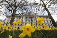 İngiltere Kamu Sektörü Net Borçlanma tahmin edilen rakam 5,80B gerçek rakam 6,58B